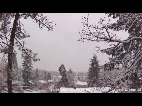 Weather Camera Live Stream - Eugene, OR USA
