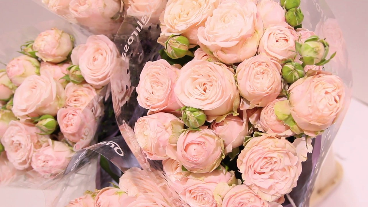 Купить искусственные розы оптом по низкой цене, широкий ассортимент товаров с доставкой по украине в кратчайшие сроки тел. +8 066 923–33–22.