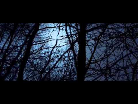 Túlélés a farkasokkal(Supravietuitor cu lupi)+Srt in limba rom letöltés