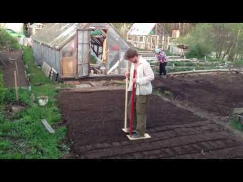 Утрамбовываю землю после посадки газона