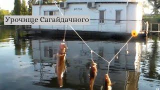 Урочище Сагайдачного (Три щогли). Риболовля 10.06.2021