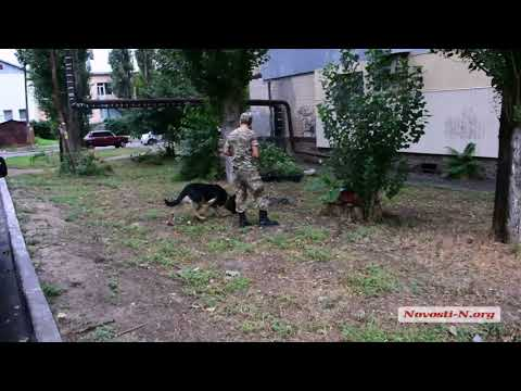 Видео 'Новости-N': В Николаеве обнаружили труп женщины