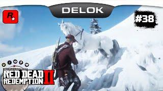 САМАЯ ДОРОГАЯ И БЫСТРАЯ ЛОШАДЬ В ИГРЕ БЕСПЛАТНО!!! Часть 2 ¤ Прохождение Red Dead Redemption 2 #38