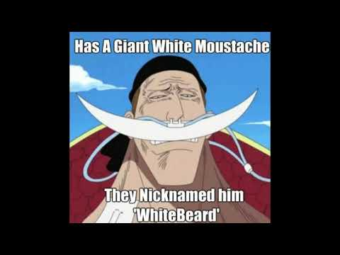 funny-one-piece-memes-wonderful-video