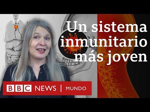 El sistema inmunitario
