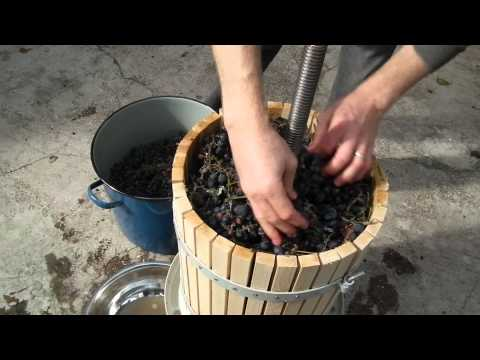 How to make grape juice with a traditional wine press