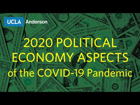 """2020 """"Political Economy Aspects of the COVID-19 Pandemic"""""""