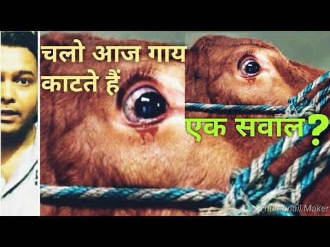 Gau seva by govt | gau rakshak in india | cow lynching | india top in beef export | global report