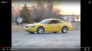 2004 Mustang GT Screaming yellow: Story