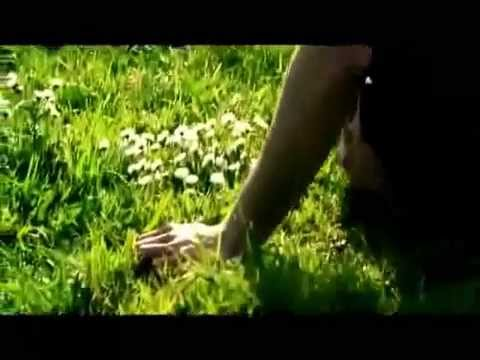 Aida Busuioc - Cine stie-n lumea asta [Official]