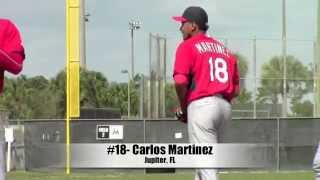 St. Louis Cardinals Spring Training - Carlos Martinez 2015