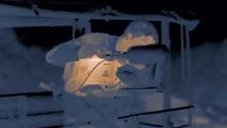 Night Stalkers -  Leopards