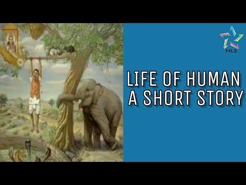 Life of Human - Short Story