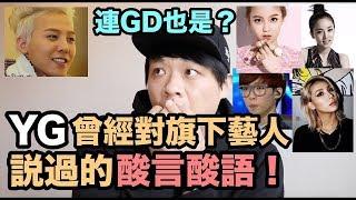 """連GD也被說過?YG曾經對旗下藝人說過的""""酸言酸語""""!DenQ"""