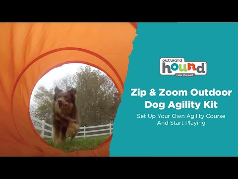 Outward Hound Zip & Zoom Outdoor Dog Agility Kit