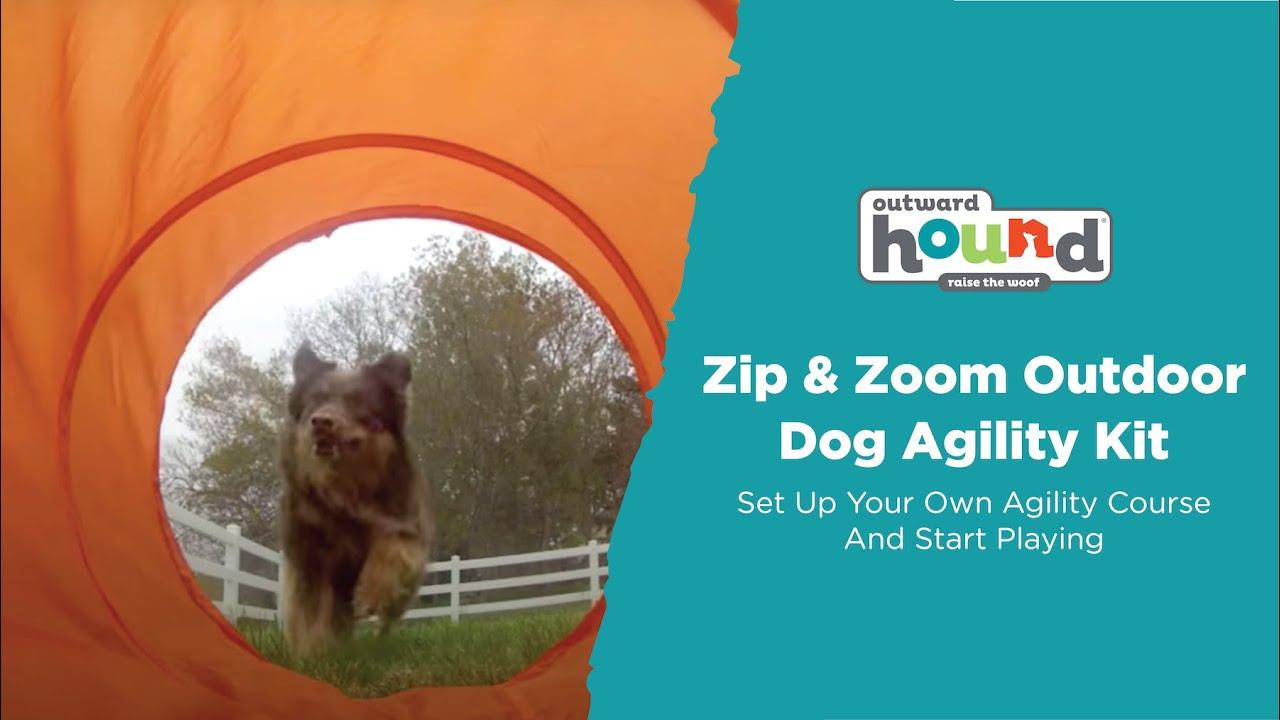 outward hound zip u0026 zoom outdoor dog agility kit youtube
