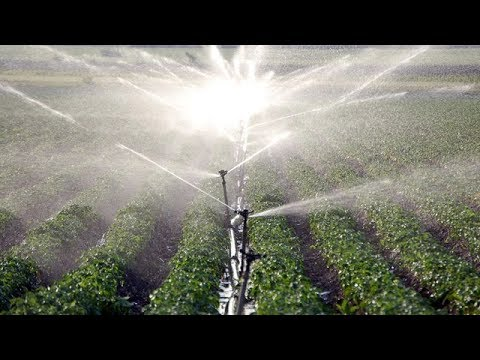 Webinar: Water Trading