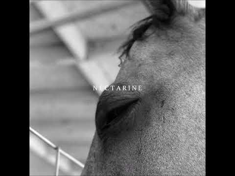 Funeral Advantage - Nectarine [Full Album]