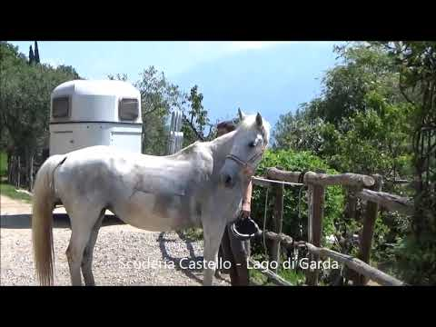 Scuderia Castello: nel silenzio e nel verde del Parco Alto Garda Bresciano e sul Lago di Garda