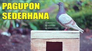 Video BIKIN PAGUPON UNTUK BURUNG MERPATI # MERPATIKU download MP3, 3GP, MP4, WEBM, AVI, FLV Oktober 2018