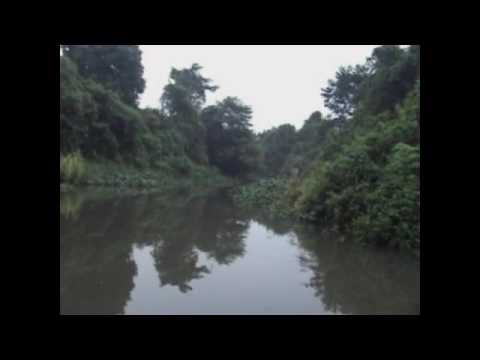 Sikia Jhora Jayanti Boat Safari Full Video