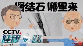 《健康之路》 20191216 肾结石哪里来| CCTV科教