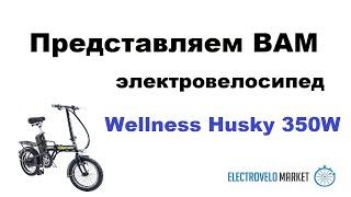 видео Электровелосипед WELLNESS BREEZE 350