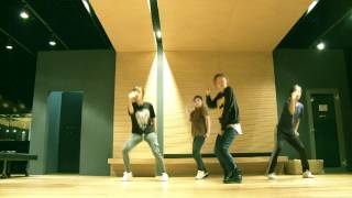 2ne1 dance tutorialcant nobody 1st verse