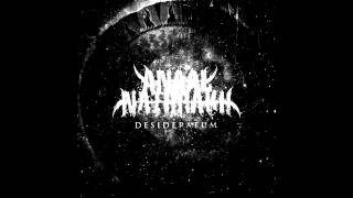 Anaal Nathrakh - Sub Specie Aeterni (Of Maggots, And Humanity)