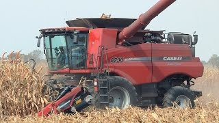 case ih 8230 combine with crow creek farms on 10 1 2014
