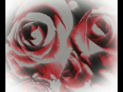 Joan Osborne Bold As Love