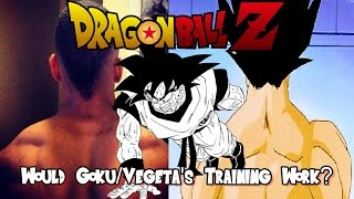 One of JaxBlade's most viewed videos: Would Goku and Vegeta's Training Work in Real Life?