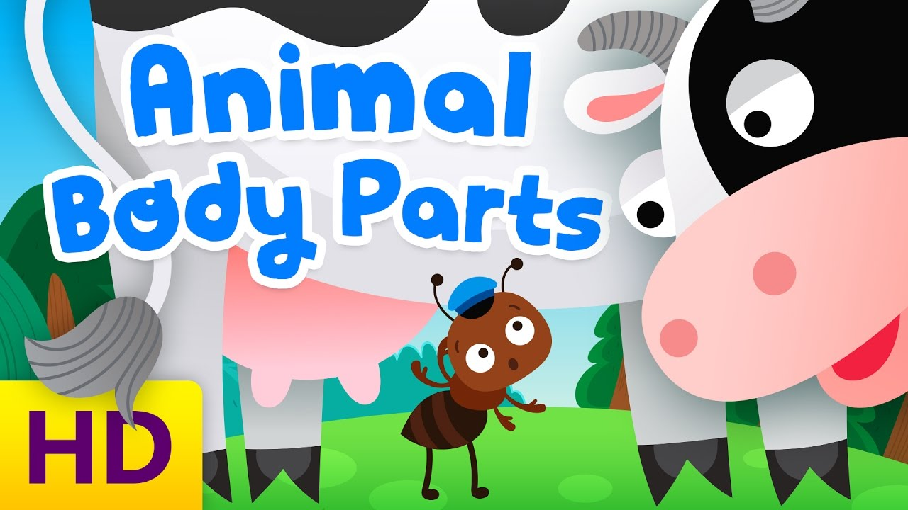 Learn animal body parts | Funny animated cartoon for kids - YouTube