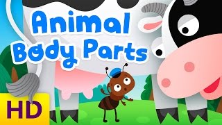 Learn Animal Body Parts