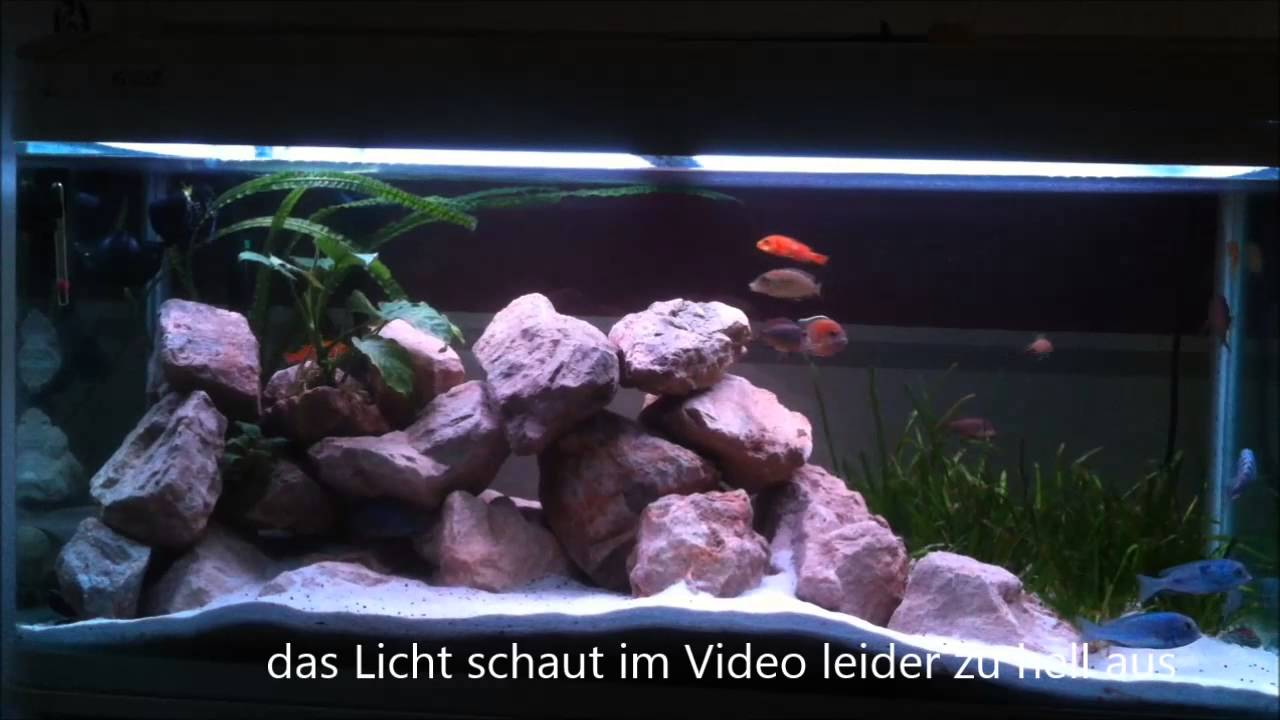 5050 rgb lichtsteuerung f r aquarium mit controller ms 35 youtube. Black Bedroom Furniture Sets. Home Design Ideas