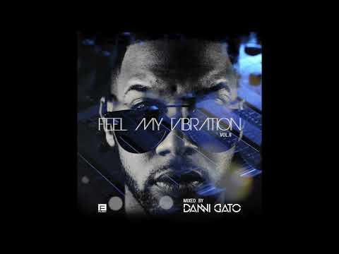 Feel My Vibration | AfroHouse | Vol.2 | DJ DANNI GATO (2018)