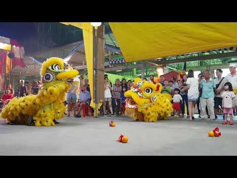 Lion Dance (腾勇)