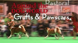 Around the Dog World - Crufts and Pawscars 2017 Teaser