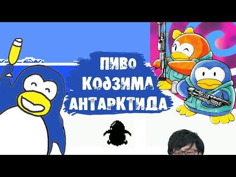 Пента - самый знаменитый игровой пингвин