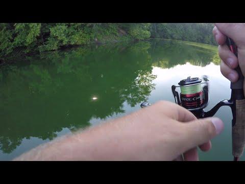 Its A Struggle!! Summer Bass Fishing