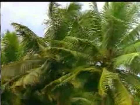Indian Tourism    Gods own Country Kerala