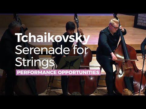 tchaikovsky---serenade-for-strings-in-c-major-op-48