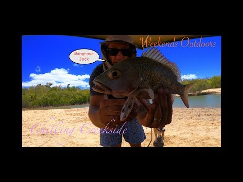 Townsville Land Based Fishing - Mangrove Jack - 4k