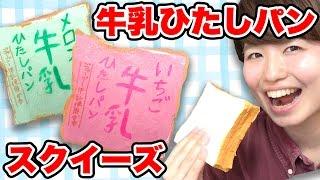 【DIY】簡単!牛乳ひたしパンスクイーズ作ってみた! thumbnail