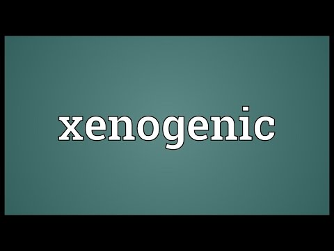 Xenogenic Meaning
