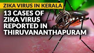 Kerala News: 13 Cases Of Zika Virus Reported In Thiruvananthapuram