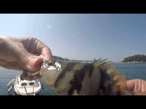 Croatian Light Rock Fishing 2K15
