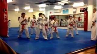Enshin Karate : Shiro obi no kata - 2