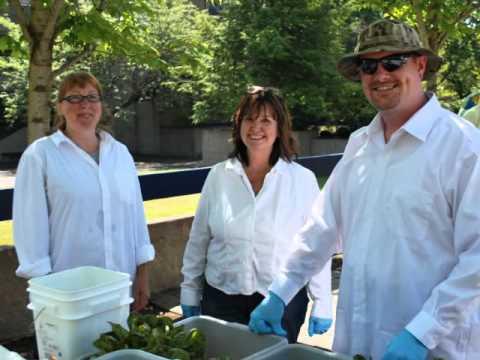 Organic Market Mondays at Clackamas Community College (CCC)