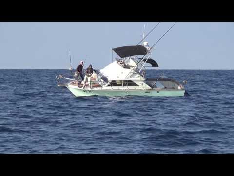 Big Game Fishing  Kroatien / Croatia